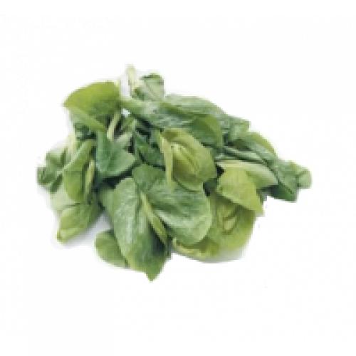 豆苗(約300g)