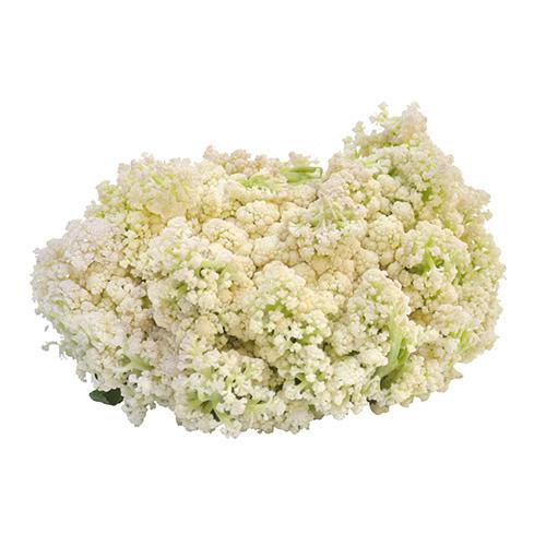 福建椰花(約1000g)