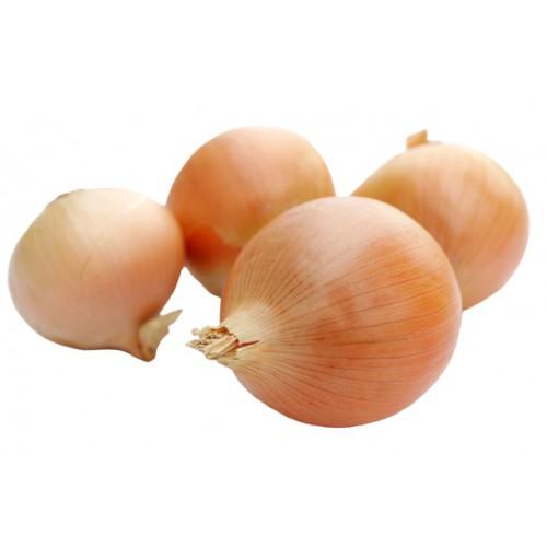 外國洋蔥(2個)